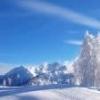 Talvetar